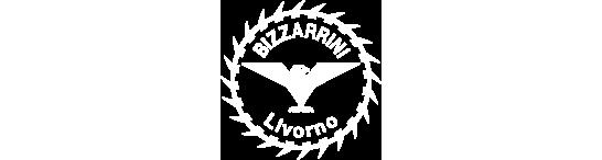 Bizzarinni Logo